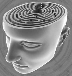 Grey-3-D-Brain-Maze.jpg